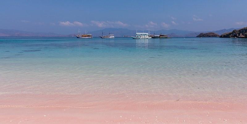科莫多島 Pink Beach