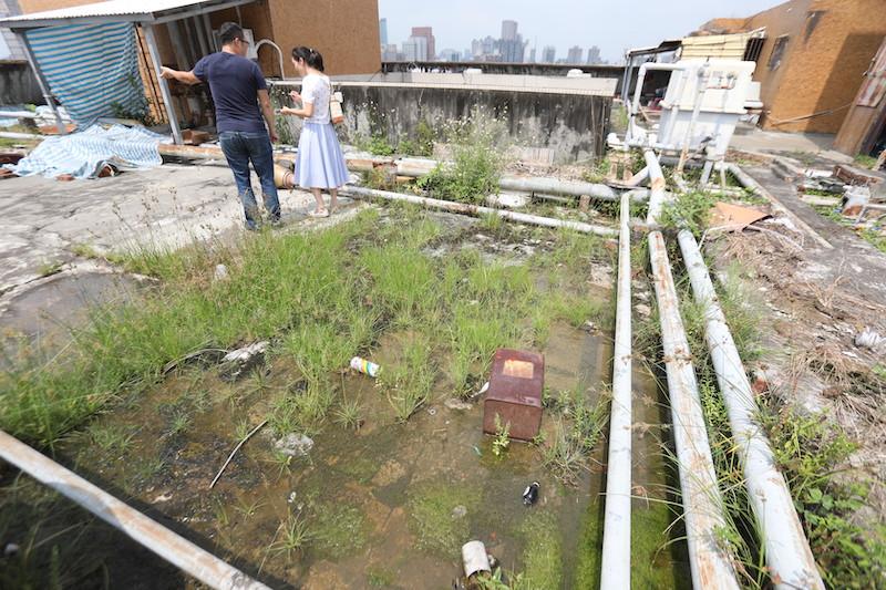 ▲春花阿姨買下屋齡36年的舊大樓,頂樓長年有積水問題,遇到下雨更是汪洋一片。