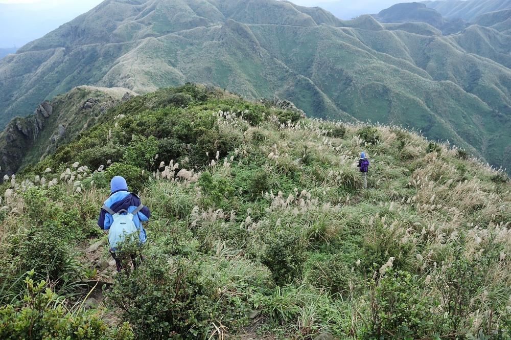 九份的無耳茶壺山,是看山望海的絕佳步道。