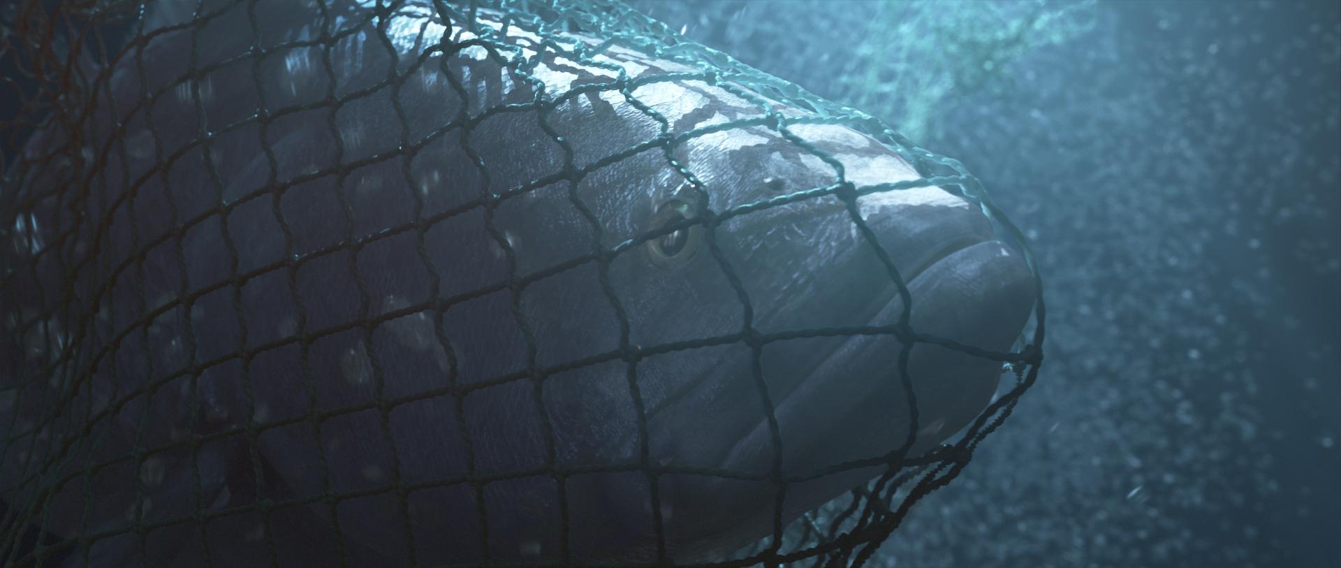 《魅影海洋》日舞影展國際紀錄長片觀眾票選 爛番茄影評指數高達97% 強力推薦