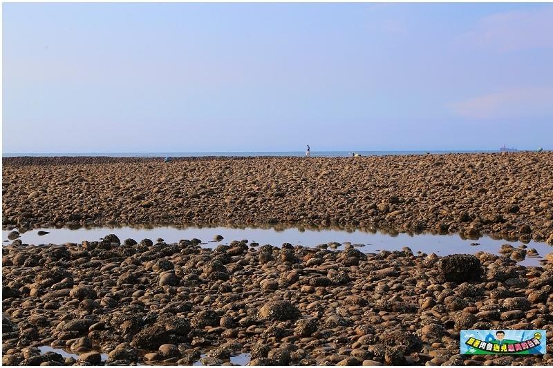 苗栗一日遊|慢魚海岸自行車