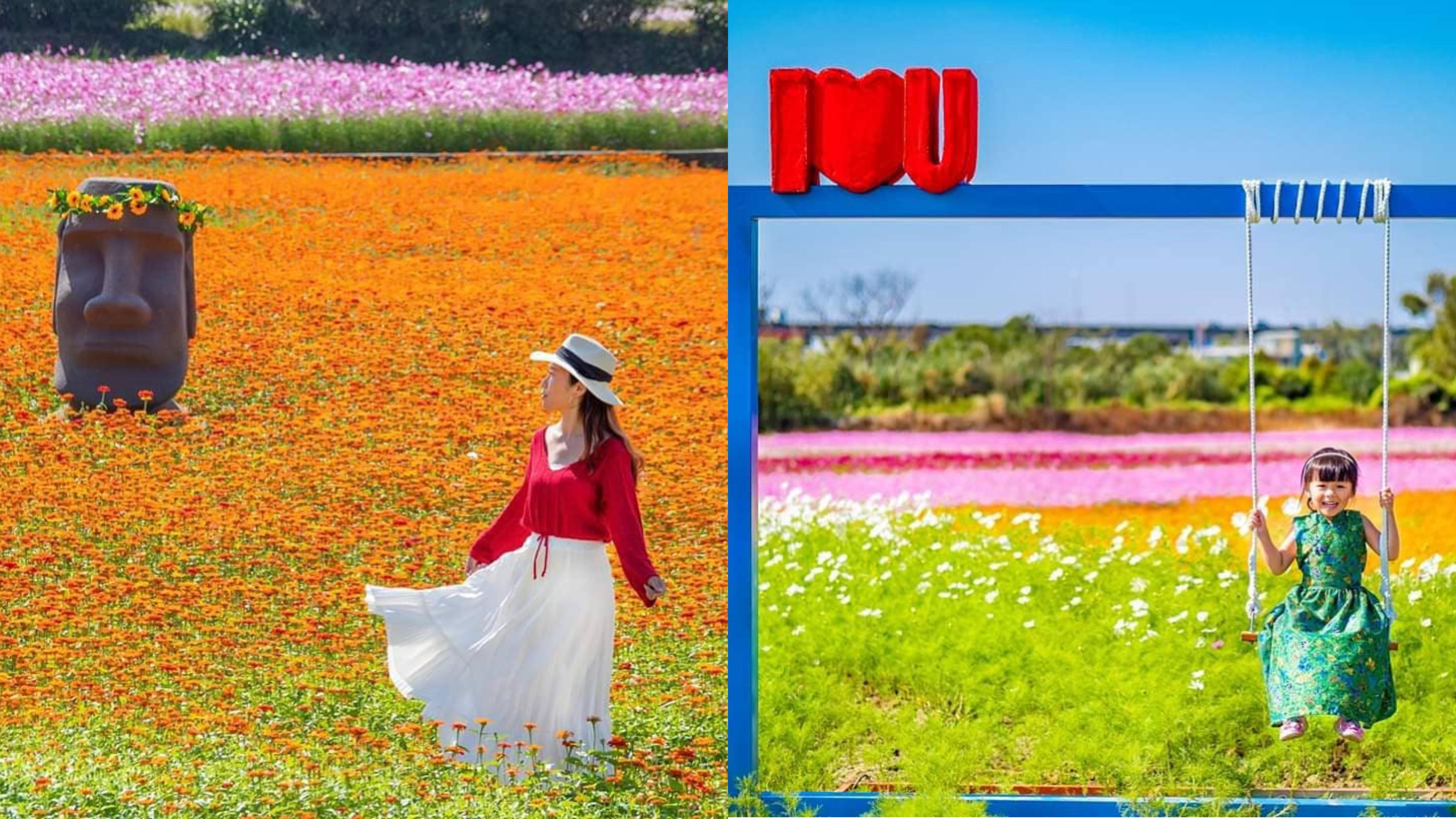公路旅行的浪漫!搭桃園客運拍好拍滿花彩節浪漫花海