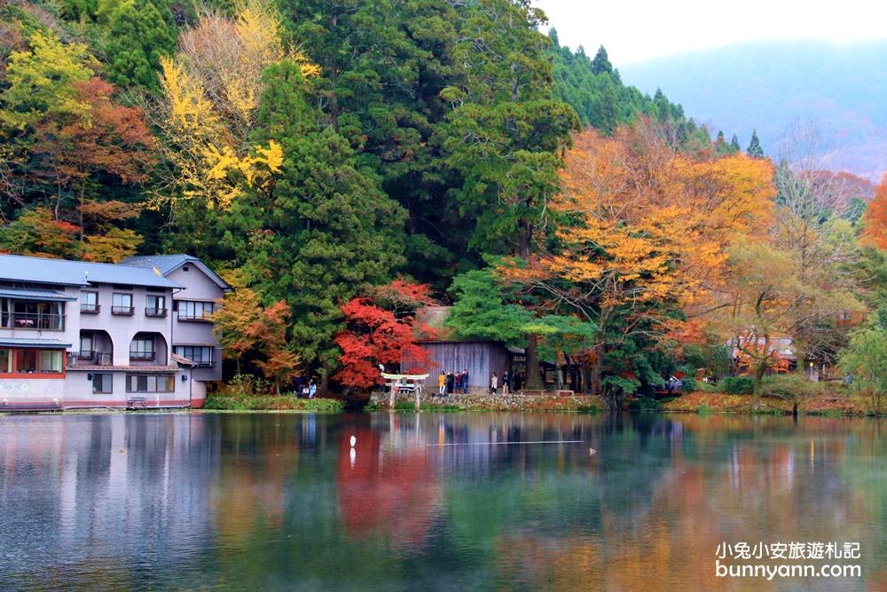 由布院必遊景點夢幻金鱗湖