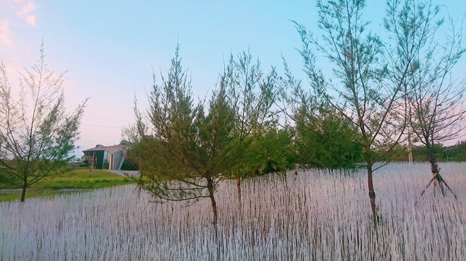 壯圍沙丘地景藝術節作品之一坡白留青以白竹籤打造夢幻又浪漫的雪景。圖/東北角之友臉書粉絲專頁