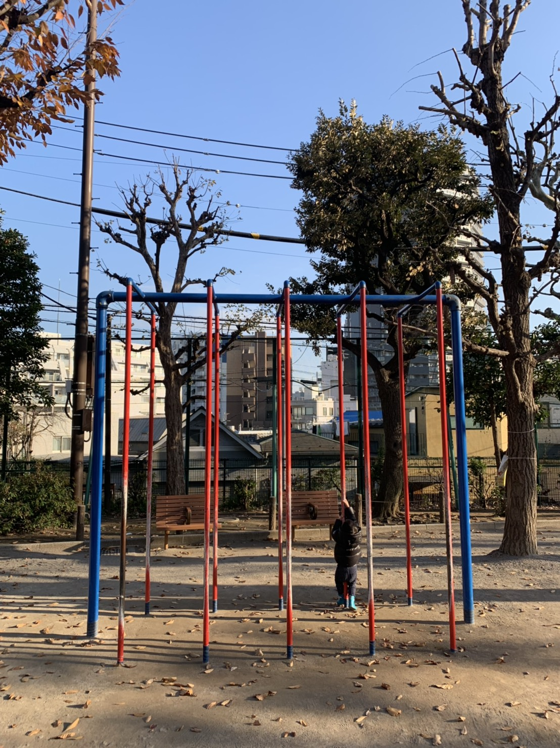 白銀公園有各式訓練體能的設施,大人小孩都能玩得盡興。