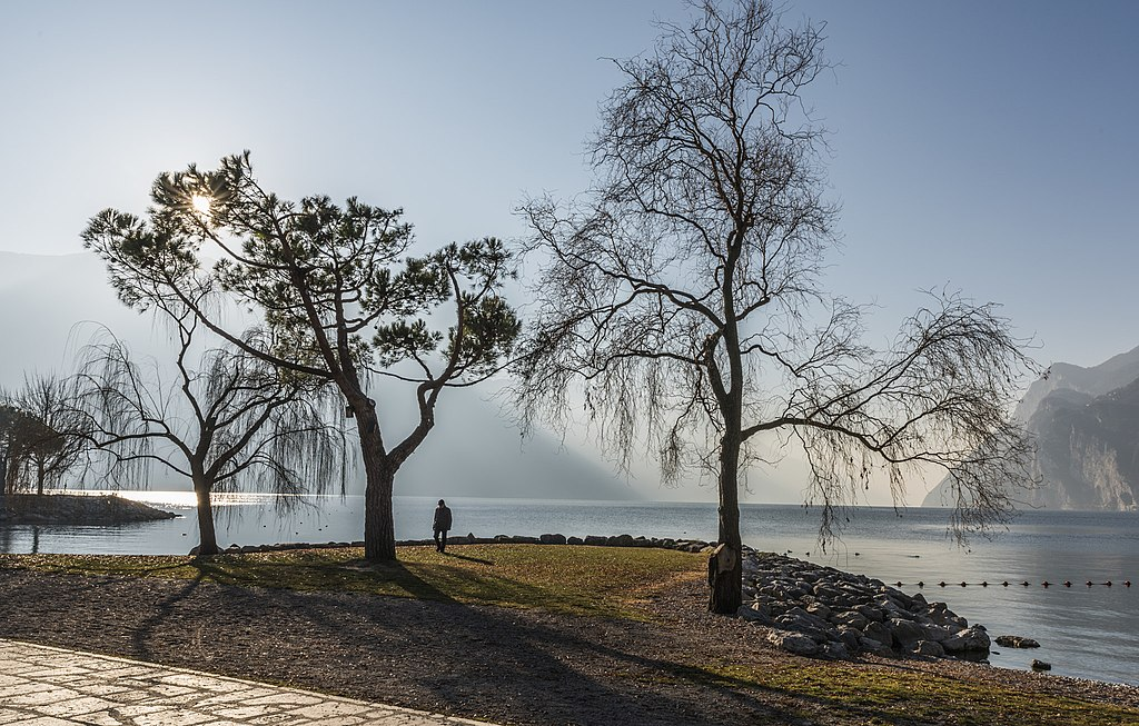 加爾達湖 (Photo by Davide Cavalli, License: CC BY 3.0, 圖片來源web.500px.com/photo/134417389/Al-Lago-by-Davide-Cavalli)