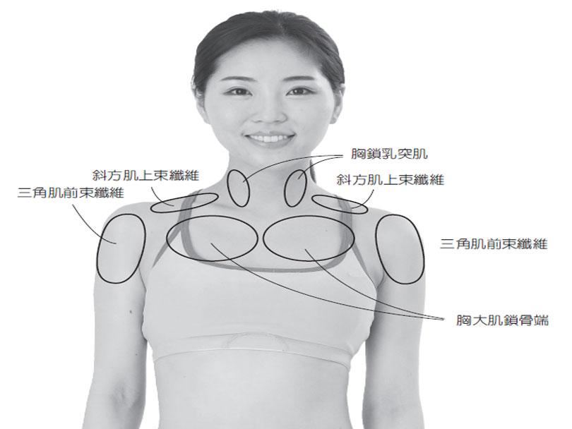 鎖骨缺乏活動的人,大多處於肌肉僵硬且皮膚緊繃的狀態。