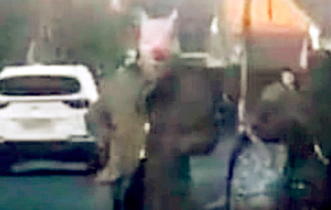 Police are attempting to trace a man frightening children while wearing a pig mask (SWNS)