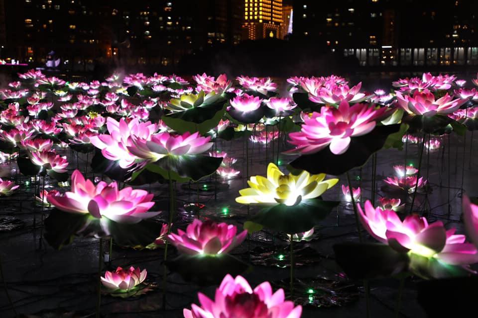 大型燈飾裝置荷塘灣影(圖片來源:2019澳門光影節 Macao Light Festival FB)