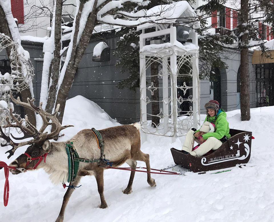 ▲瑞莎笑稱北海道的麋鹿不是「當地自產」,而是冬天才去打工的。