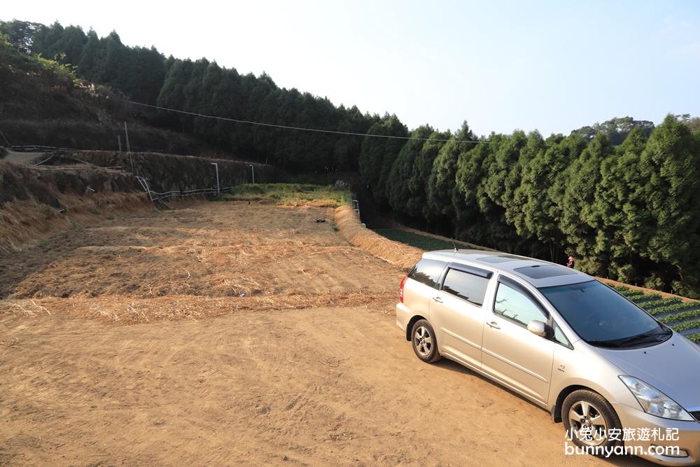 馬拉邦山金鑽草莓園
