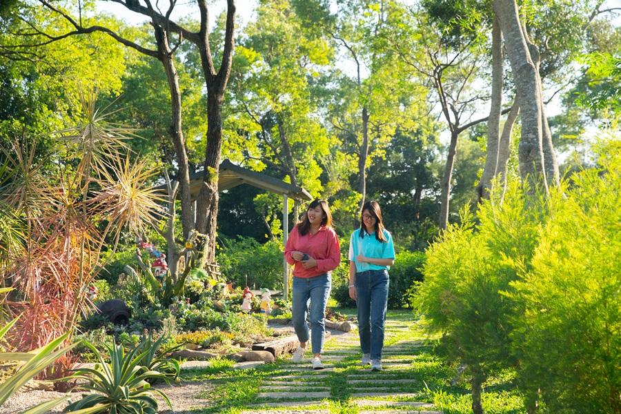 園區處處皆景怎麼拍都好看。攝影/李文欽