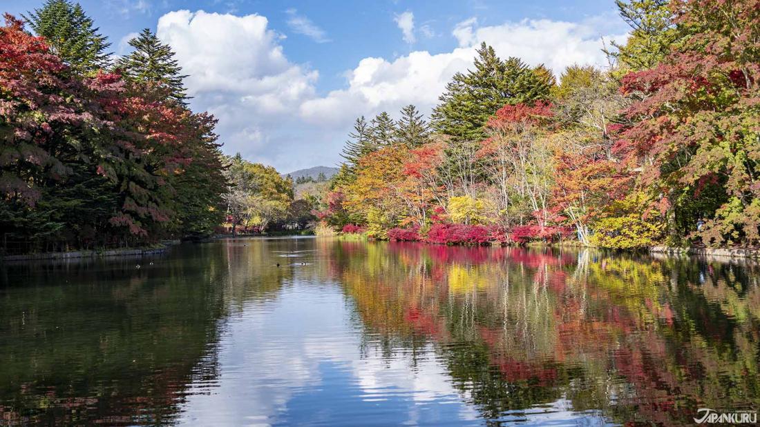 雲場池的秋景,個人覺得是一年四季最多彩的時候。