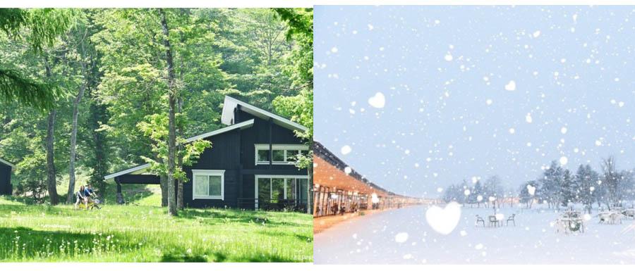 夏天的鬱鬱蒼蒼、冬天的白雪皚皚,輕井澤的四季讓人充滿嚮往。