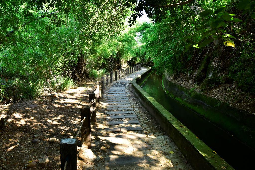 知高圳步道沿著圳建造,枕木鋪設的步道與山林融為一體。圖/台中觀光旅遊網