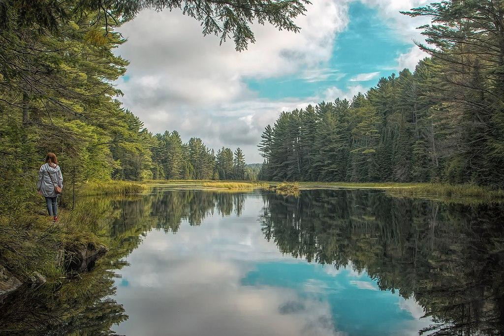 阿爾岡昆省立公園 (Photo by Justducky1970, License: CC BY-SA 4.0, Wikimedia Commons提供)