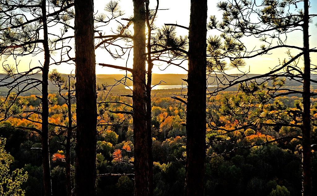 阿爾岡昆省立公園 (Photo by LBM1948, License: CC BY-SA 4.0, Wikimedia Commons提供)