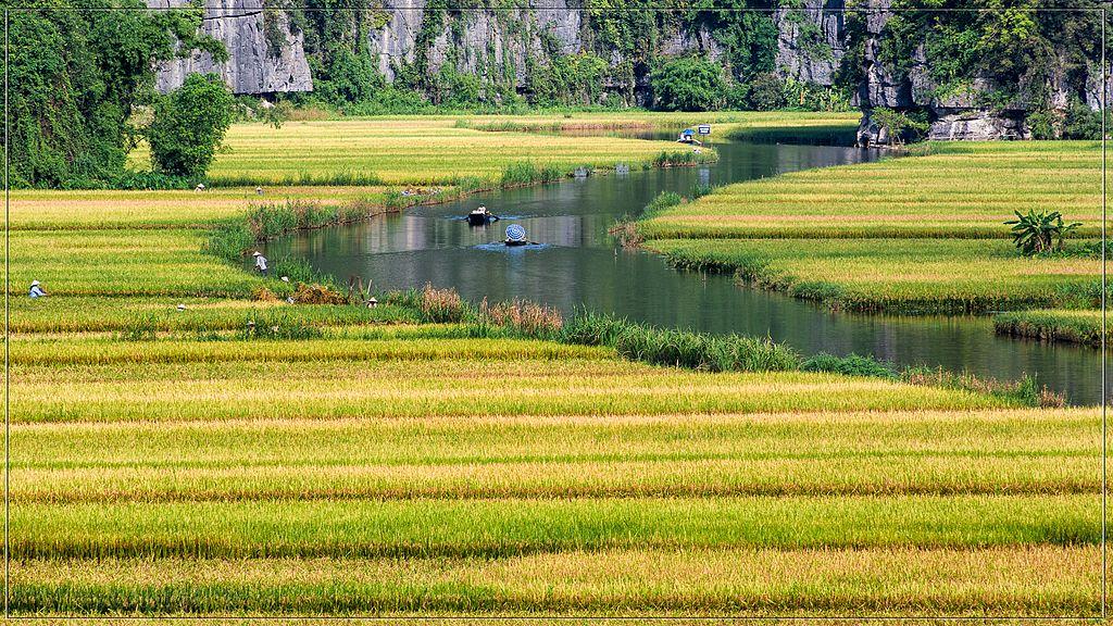 寧平 (Photo by Tuan Mai, License: CC BY 2.0, 圖片來源www.flickr.com/photos/tuan-trang/8888379345)