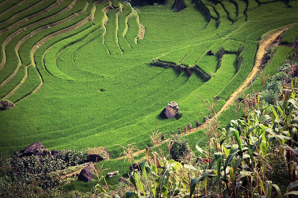 沙壩 (Photo by siamak djamei, License: CC0, 圖片來源unsplash.com/photos/BTv0K50c_4M)