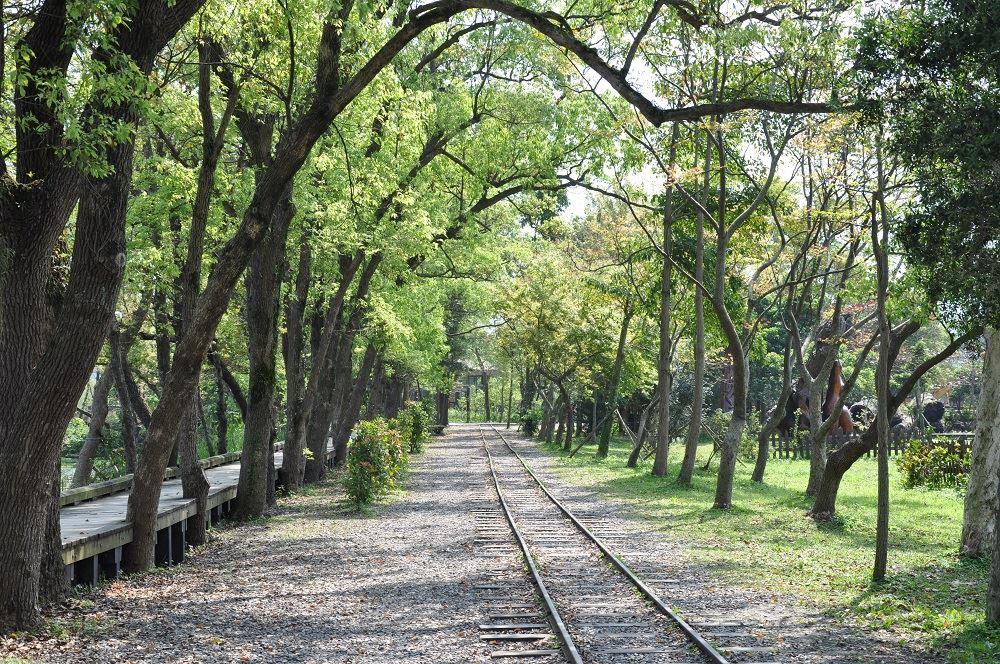 羅東林場保存自日治時期的貯木池、竹林車站、日式宿舍群、部分火車鐵軌與蒸汽火車頭,讓人窺見昔日林業的繁盛風華。圖/台灣山林悠遊網