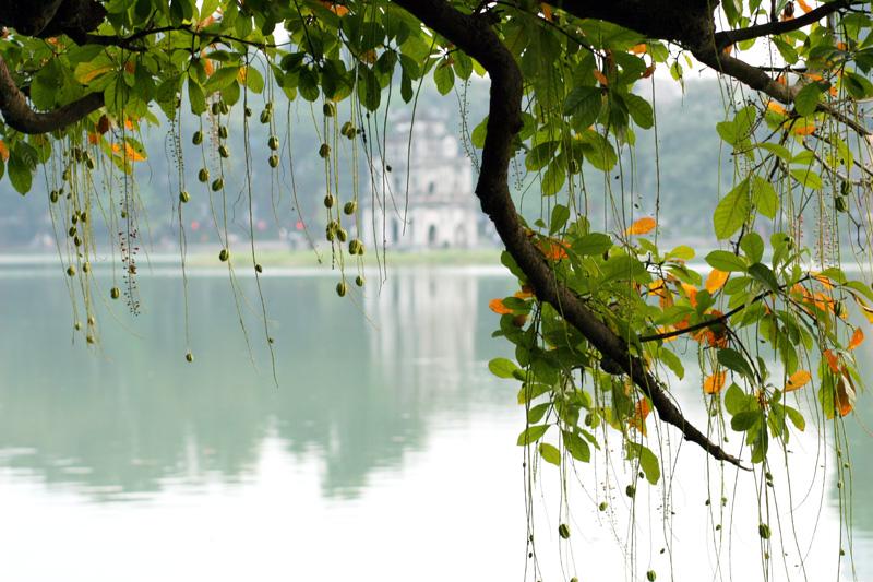 還劍湖 (Photo by Nguyen Quang Tuan, License: CC BY 2.0, 圖片來源www.flickr.com/photos/7791791@N07/2913157935)