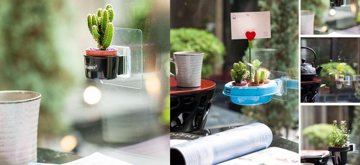 超方便的迷你盆栽家,任何地方都能輕鬆裝飾