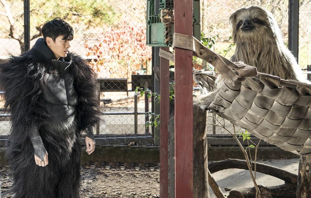 樹懶哪有那麼大隻!動物園驚見《星際大戰》中的「丘巴卡」?!