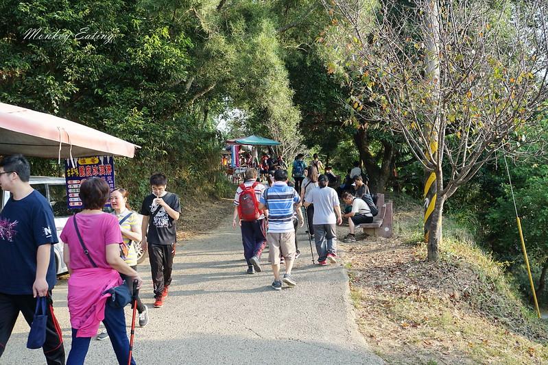 大坑9-1號登山步道