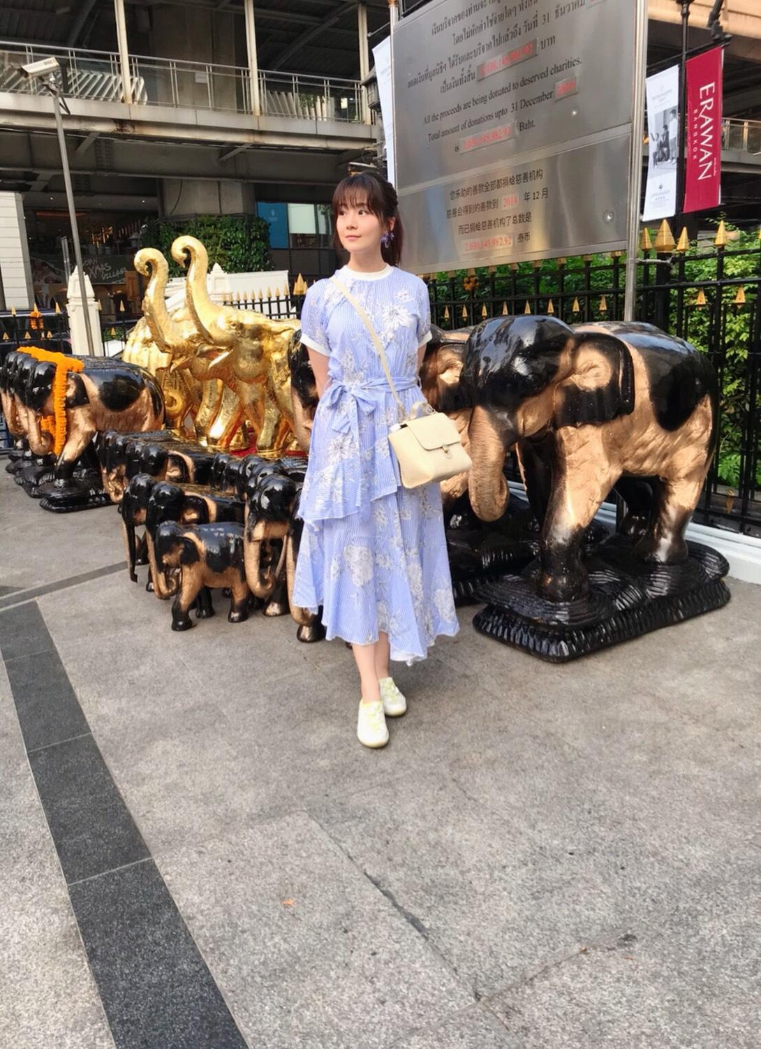 ▲這次赴泰國行,讓楊小黎遇到很多計畫之外的事情。