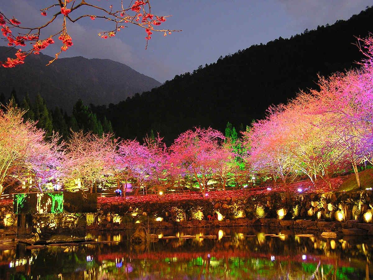 (圖片來源:九族文化村)