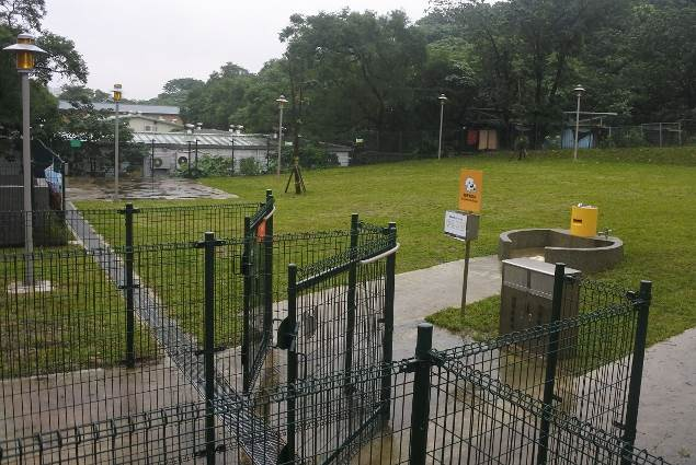 潭美毛寶貝快樂公園配合山坡地形,設置木棧階梯與無障礙坡道,方便年老犬隻或是患有關節疾病的大型犬行走。圖/北市府動保處