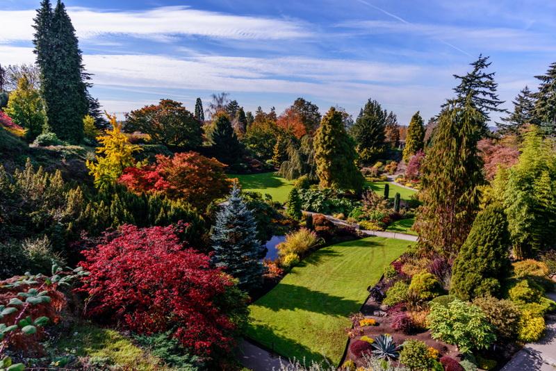 圖/伊莉莎白王后公園是溫哥華人心中最美的城市花園。