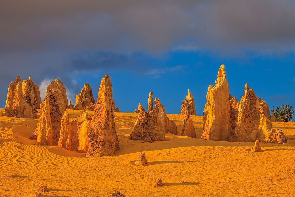 尖峰石陣 (Photo by Murray Foubister, License: CC BY-SA 2.0, 圖片來源commons.wikimedia.org/wiki/File:Sunrise_and_early_morning_colours_of_the_spectacular_pinnacles_of_Nambung_National_Park_near_Cervantes,_WA_(13113608985).jpg)
