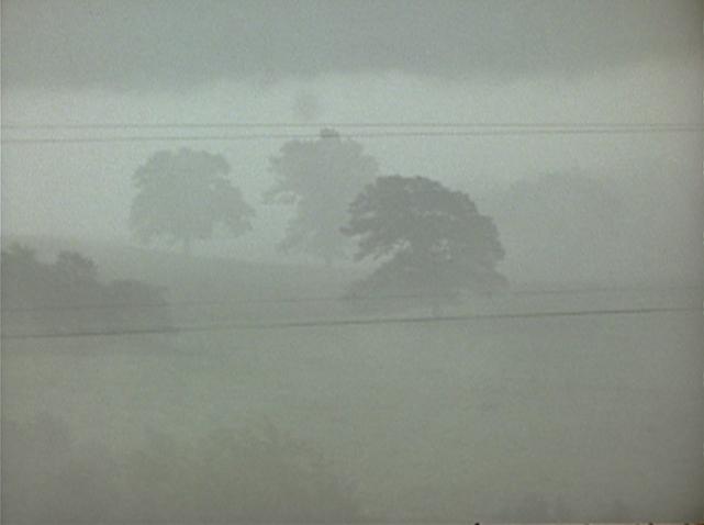 賴瑞‧高譚《霧》