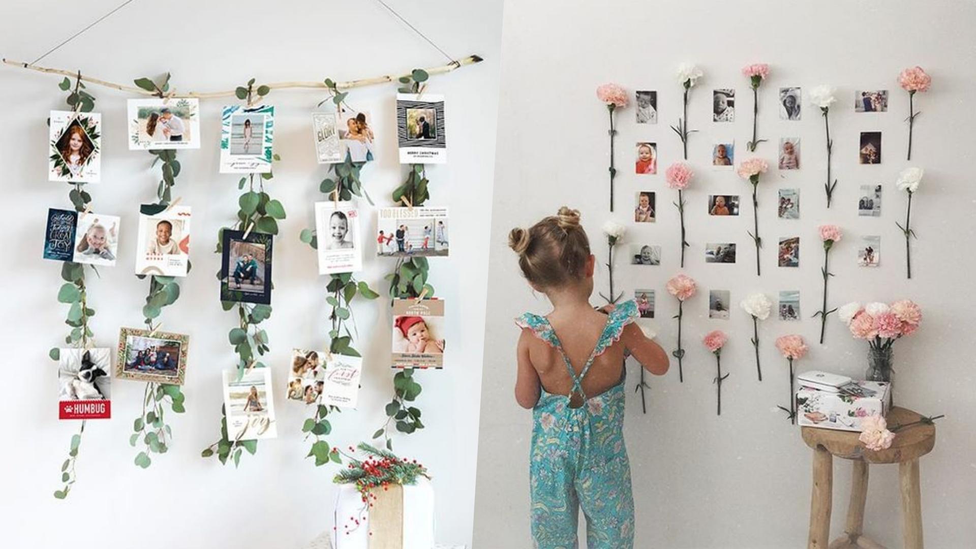 將植物和照片結合,為家中增添綠意吧!