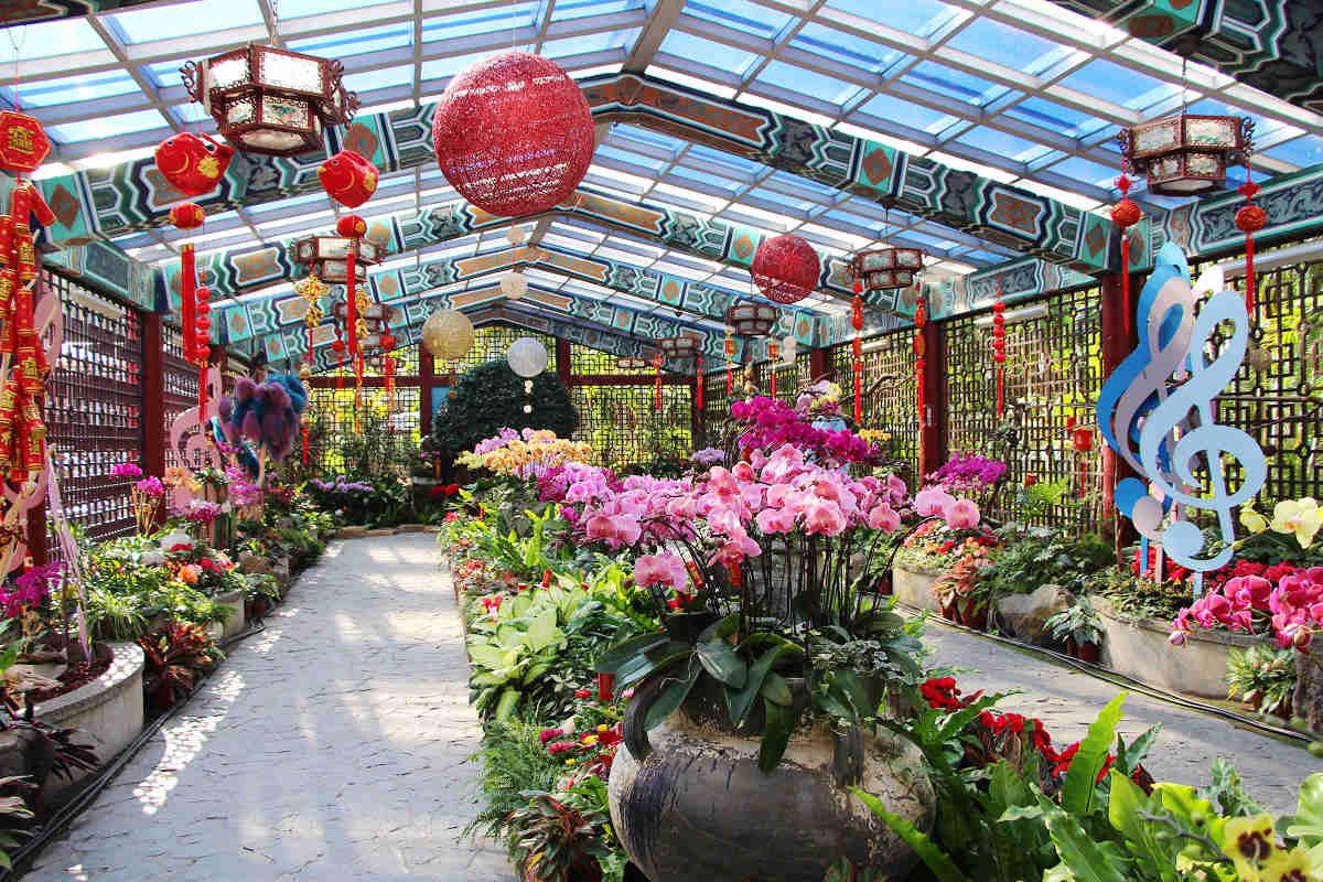 士林官邸春節花卉展(圖片來源:台北市政府工務局公園路燈工程管理處)