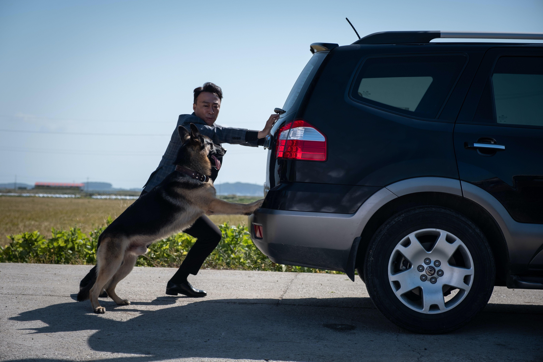 天才狗演員完美演出讓「演技之神」申河均大喊為牠配音壓力大