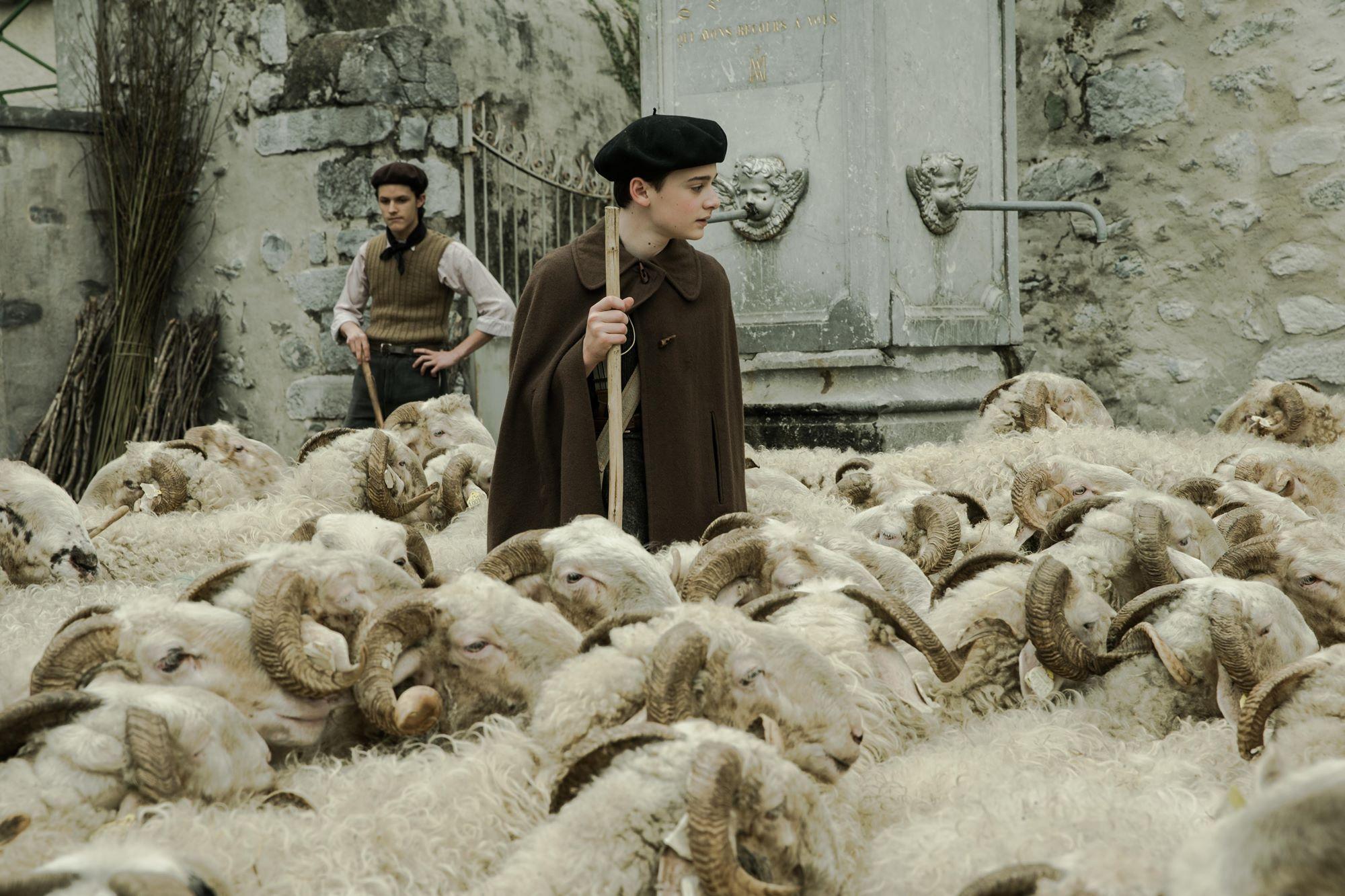 天才童星諾亞施納普不滿意自己在《怪奇物語》的髮型 認為自己比較適合當牧童