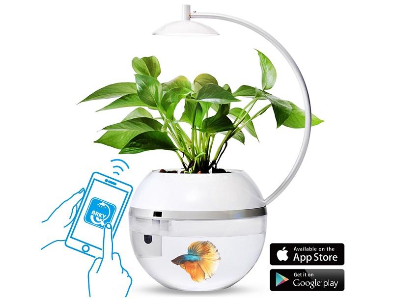 ▲魚草共生循環生態,用專屬app智能操控,生機勃勃就是療癒。(圖片來源:Yahoo購物中心)