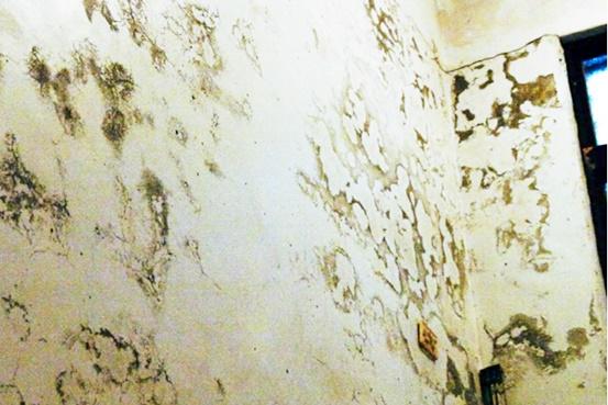 ▲壁癌象徵家中漏財,實際上也代表牆壁的破壞。謝沅瑾命理研究中心提供