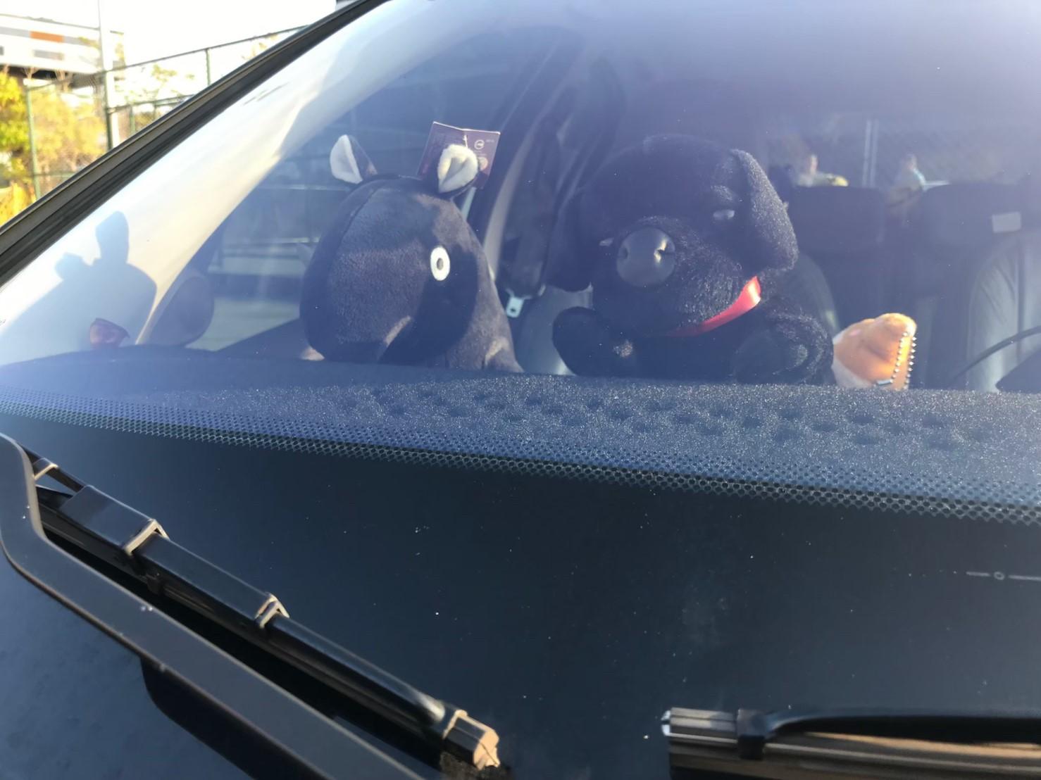 ▲張耀中除了在愛車中控台,放置避光墊,也擺放了兩隻絨毛玩偶,讓愛車更有獨特性。