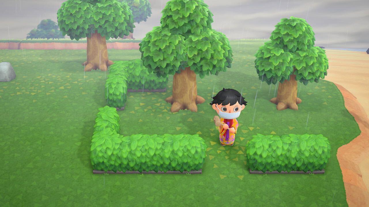 どうぶつの森