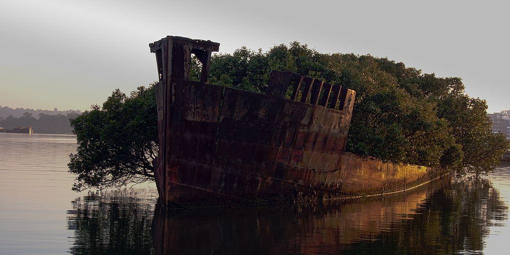SS Ayrfield號 (Photo by Jason Baker, License: CC BY 2.0, 圖片來源www.flickr.com/photos/mezuni/5581544664)