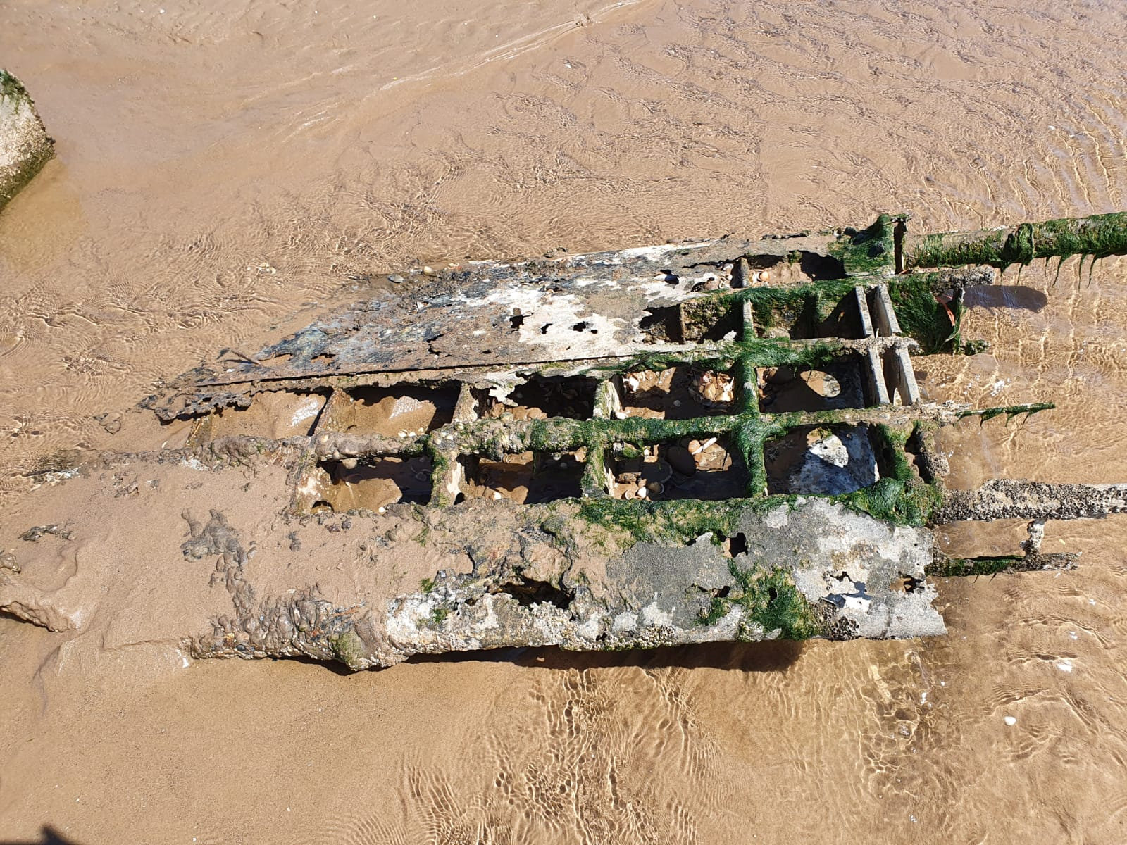 "The wreckage of the WWII RAF Bristol Beaufighter which has been discovered on a Cleethorpes beach in in North East Lincolnshire. See SWNS story SWLEplane. A pair of dog walkers stumbled across the wreckage of a rare WWII RAF fighter plane hidden on a beach where it had been buried under the sand for 76 YEARS. Debi Hartley, 51, was on a casual walk with her partner Graham Holden, 54, and their dog Bonnie when they made the ""one in a million"" discovery.  The carcass of the airplane revealed itself on an undisclosed patch on Cleethorpes beach, with its wings protruding through the shifting sands. The RAF confirmed that the wreckage is one of their Bristol Beaufighter, believed to be aircraft serial number JM333 of 254 Squadron RAF."