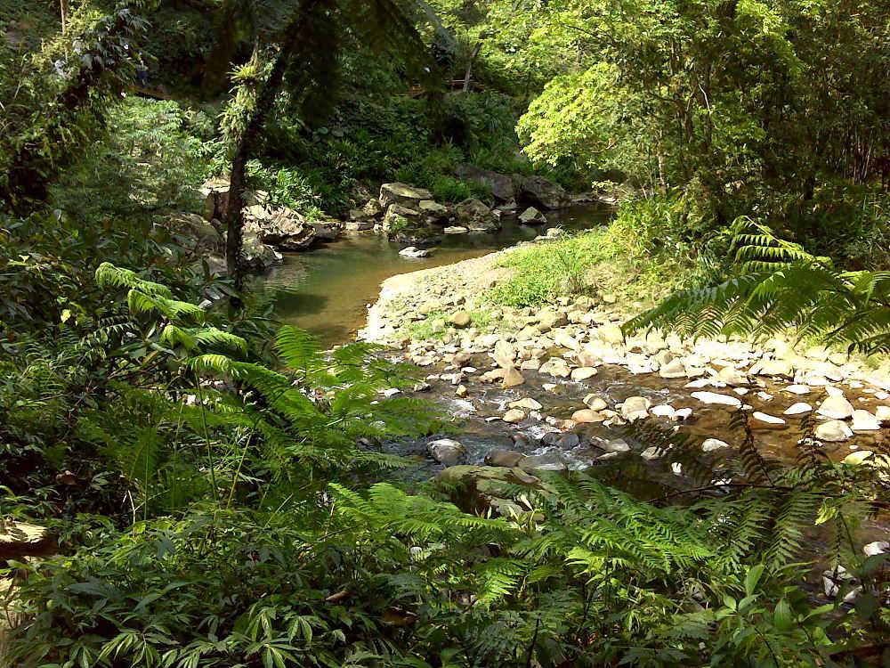 金瓜寮溪(圖片來源:新北市觀光旅遊網)