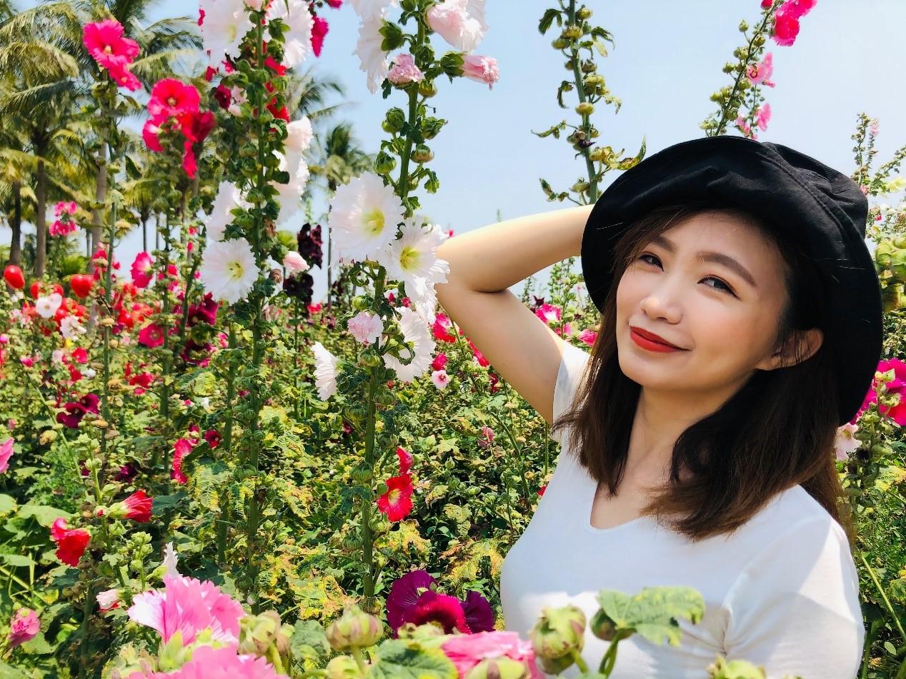 ▲春暖花開,台南學甲蜀葵花海結合紅藜花形成浪漫的花海迷宮。
