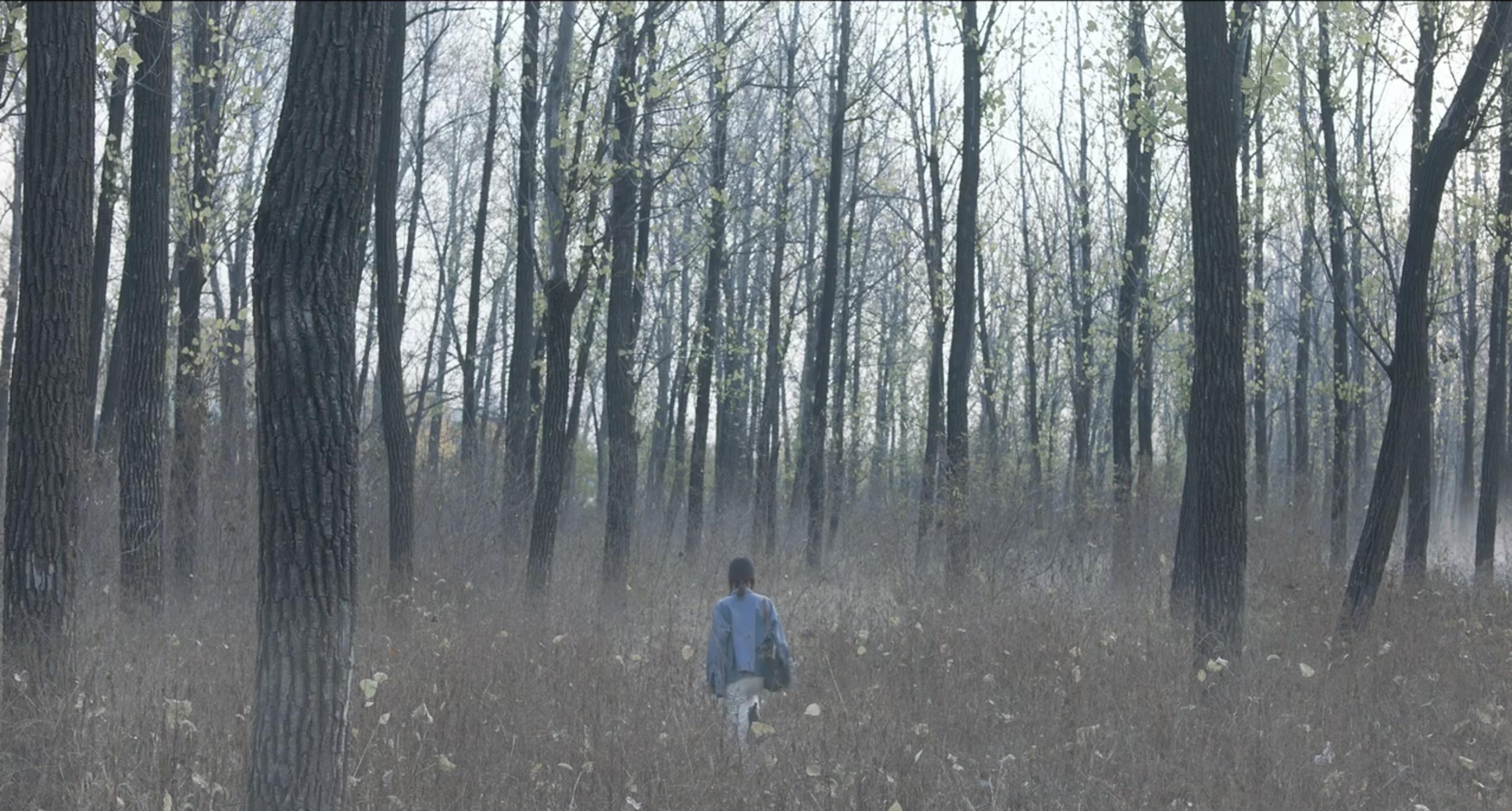 《蘇荔》預計將於今年底遠赴匈牙利開鏡與《夢鹿情謎》奧斯卡入圍團隊聯合製作