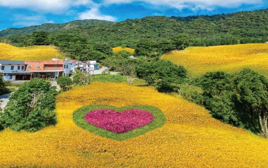 今年赤科金針花季主題為「仙境漫遊」(圖片來源:2020赤科山金針花季網站)