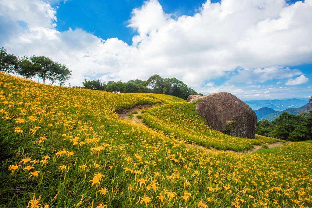 赤科三景之一-千噸石龜之美(圖片來源:花東縱谷國家風景區)
