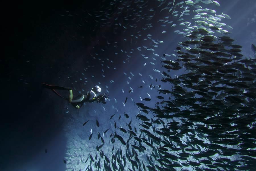 《男人與他的海》電影劇照